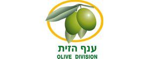 Olive Division